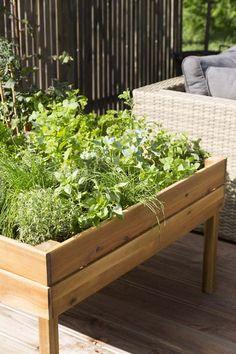 KARWEI | Met deze kweektuin kun je erg gemakkelijk de lekkerste groenten of kruiden kweken.