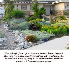 Frontyard ideas...interestingly, the house kinda looks like ours!