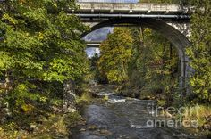 Deschutes River Bridges: I photographed this scene in between rain showers at the Tumwater Falls Park, Tumwater, Washington