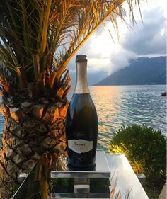#Romantic #sunset in #Montenegro #Fantinel #OneAndOnly #Prosecco #seaside #adriatic #kotorbay #wine #wineoclock #love #colors #lifestyle