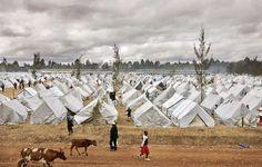 Quem realmente acolhe os refugiados? - http://controversia.com.br/23234