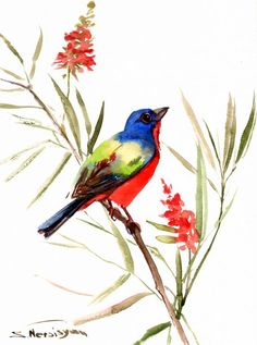 Painted Bunting Original watercolor painting by ORIGINALONLY