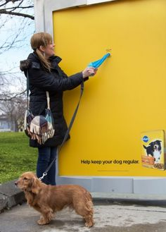 Pedigree  Agency: Proximity BBDO, Canada  Because dogs relieving themselves in public spaces is a problem, this shelter gave out free bags to help clean up the mess. via http://www.simplyzesty.com/