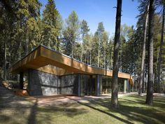 Sketchy Decor For Elegant Forest House Modern Construction Glass Stones Concrete Combination