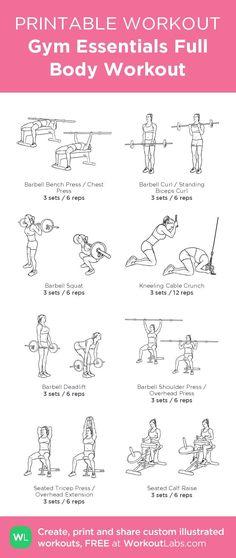nice Gym Essentials Full Body Workout