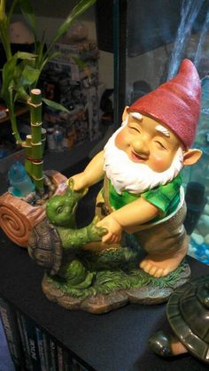 My turtle-dancing #Gnome :) #garden #home
