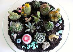DIY: creatief met je cactus