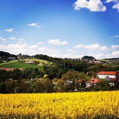#mühlviertel #auhof #stadtrand #linz #linzpictures #igerslinz #instaweather #feld #landwirtschaft #farming #farm #himmel #weather #umland #upperaustria #potd #latergram #wanderlust #outdoor