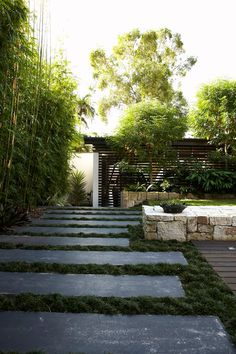 pavers with greenery between in lieu of grass?