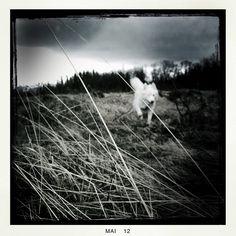 HipstaPrint by joern_kh, via Flickr Photography, Photograph, Photo Shoot, Fotografie, Fotografia