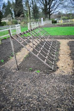 Vegetable Garden Design Photos Design, Pictures, Remodel, Decor and Ideas - page 6