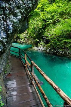 Bled (Vintgar) Gorge, Triglav National Park, Slovenia Slovenia Travel Destinations Honeymoon Backpack Backpacking Vacation Europe Budget Off the Beaten Path Wanderlust Photography Places To Travel, Places To See, Travel Destinations, Travel Tips, Places Around The World, Around The Worlds, Slovenia Travel, Visit Slovenia, Bled Slovenia