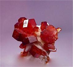 Vanadinite crystals over Barite | Flickr – Condivisione di foto!