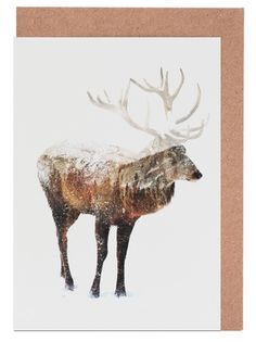 Arctic Deer - Andreas Lie - Grußkartenset