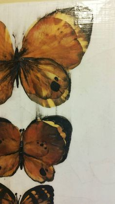 This canvas features 3 butterflies made of pressed petals and acrylic black paint. This is finished with clear varnish to seal and preserve the flowers. Canvas size: x Butterfly Canvas, Preserve, Canvas Size, Butterflies, Seal, Handmade Gifts, Flowers, Painting, Animals