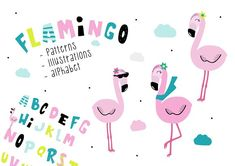 Bingo Flamingo - Illustration set by boombom design on @creativemarket