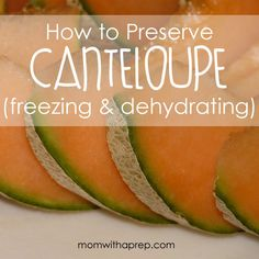 Tips for preserving canteloupe - freezing & dehydrating (and a watermelon canteloupe smoothie recipe) Canning Food Preservation, Preserving Food, Cantaloupe Recipes, Radish Recipes, Smoothies, Canning Recipes, Canning Tips, Dehydrator Recipes, Dehydrated Food