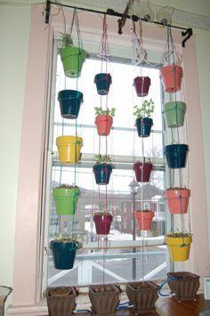 Garden in the window on Pinterest