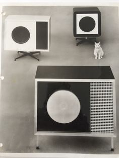 #Eames Stephens Tru-Sonic speakers, and a cat!