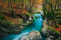 Amazing blue colored stream, called Mostnica, Slovenia, Europe.   Follow me on Instagram: https://www.instagram.com/panitimarti  Facebook: https://www.facebook.com/MartaPanitiPhoto  Web: www.panitimarta.com