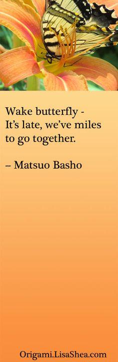Wake Butterfly   lisashea #Quotation #Matsuo_Basho