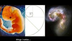 Math of the Gods  http://m.facebook.com/l.php?u=http%3A%2F%2Fwww.youtube.com%2Fwatch%3Fv%3DHIXcq_UPFKc=WAQH_WxP4=1