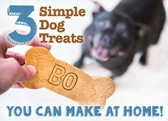 3 Simple Dog Treats You Can Make at Home | eBay