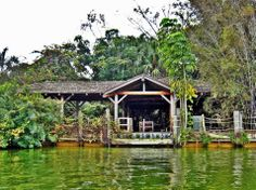 The 38 Most Haunted Abandoned Places on Earth - Disney's Discovery Island, Lake Buena Vista, Florida A former wildlife attraction in Disney World, it is rumored it was left abandoned after bacteria capable of killing humans was found in the water. Most Haunted, Haunted Places, Scary Places, Mysterious Places, Abandoned Buildings, Abandoned Places, Famous Buildings, Disney Discovery Island, City Hall Station