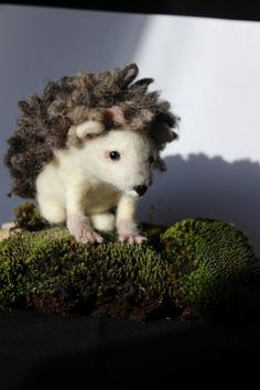 Reserved  needle felted hedgehog by OkieFolky on Etsy