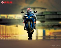 We love the - fast, fierce, and so wonderfully menacing. Yamaha R1, Ducati, Yamaha Bikes, Cool Motorcycles, Speed Bike, Ride Or Die, Valentino Rossi, Wallpaper Free Download, Dream Garage