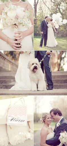 I love that they included their dog in this wedding! And I love her bouquet!