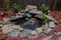 Outdoor DIY: The 7 Hour Pond