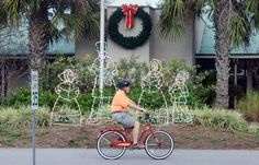 The holiday decorations in front of Coligny Plaza say it's Christmas time, but this bicyclist's attire spoke more of a warmer season on Monday. The warm weather that marked the early part of the week gave way cooler temperatures and rain by Wednesday. |