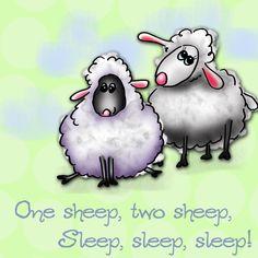 Sheep counting sheep to sleep  Debby Carman   www.fauxpawproductions.com