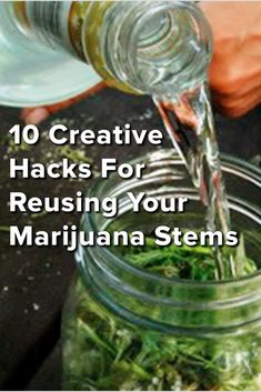 10 creative hacks for reusing your marijuana stems