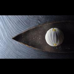 三堀 純一  @c9z_mj 14 พ.ย. 2560 #一日一菓 #菓道 #向い菊 #wagashi of the Day #mukaigiku #煉切 製 #皿 #藤倉泉 #和菓子 #JunichiMitsubori #一菓流 #三堀純一 #アート #ART #KADO_ICHIKA_STYLE #Yokosuka