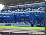 Vodacom Durban July .Beautiful picture of printed shade cloth