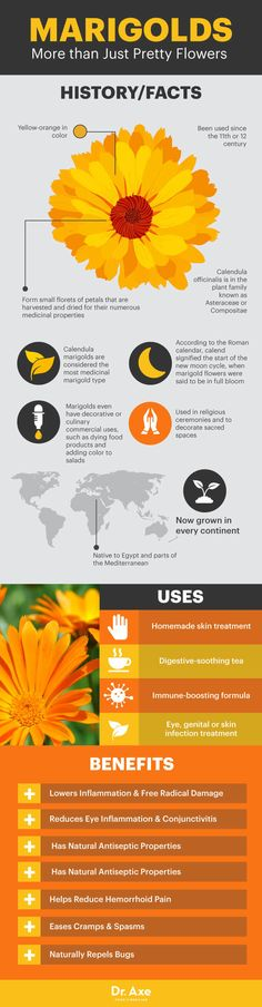Top 11 Benefits & Uses of Marigolds for Health - Dr. Axe