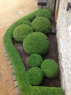 Garten anpflanzen 54 creative front yard landscaping ideas for your home 2019 27 Boxwood Garden, Garden Hedges, Topiary Garden, Garden Art, Topiaries, Boxwood Hedge, Garden Pool, Shade Garden, Formal Gardens