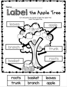 8f2ffd93abba8cddbd755d3d89ec4e83 Ocean Zones Worksheet For Kindergarten on middle school, 2nd grade, black white, animals twilight,
