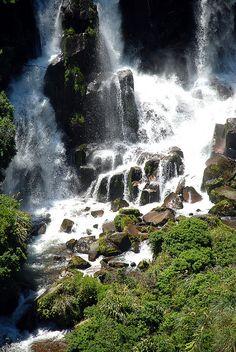 Waipunga Falls, North Island, New Zealand