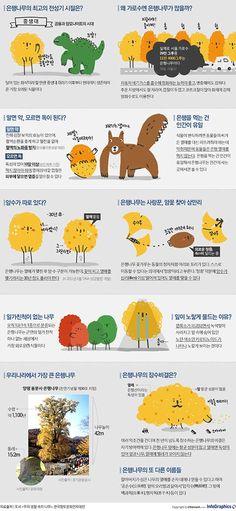 '가을의 상징' 은행나무, 알고보니 사랑꾼!