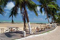 Pipa Beach from Natal #brazilbeaches #natal