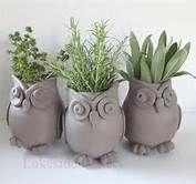 Búhos cerámica. macetas
