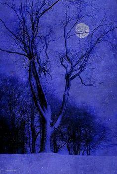Ron Jones - Winter Night