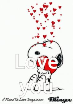 The perfect LoveYou Snoopy Heart Animated GIF for your conversation. Discover and Share the best GIFs on Tenor. Snoopy Images, Snoopy Pictures, Hug Quotes, Snoopy Quotes, Peanuts Cartoon, Peanuts Snoopy, Snoopy Hug, Love You Gif, Love You More