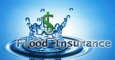 Searching for florida flood insurance quotes? Kirstein Insurance provides you instant quotes by comparing rates on Florida flood insurance. Renters Insurance, Flood Insurance, Insurance Quotes, Natural Disasters, Florida, How To Apply, Learning, Environment