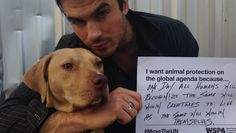 Ian Somerhalder - 04/09/13 - Let's pls get animal protection on the global agenda!! #MovetheUN to recognize #WorldAnimalDay http://www.wspamove.org/theUN  http://pic.twitter.com/51GQf9VPGt - Twitter & Instagram Pictures http://instagram.com/iansomerhalder/#