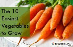 The 10 Easiest Vegetables to Grow via @SparkPeople
