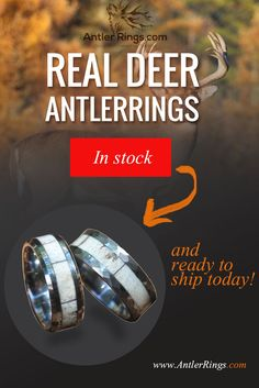 Courtesy of AntlerRings.com. Real Hand Made Deer Antler Rings - our latest small batch is ready.  Available and ready to ship today!